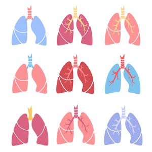 AO54 I Cystische Fibrose und weitere seltene Erkrankungen mit Lungenbeteiligung